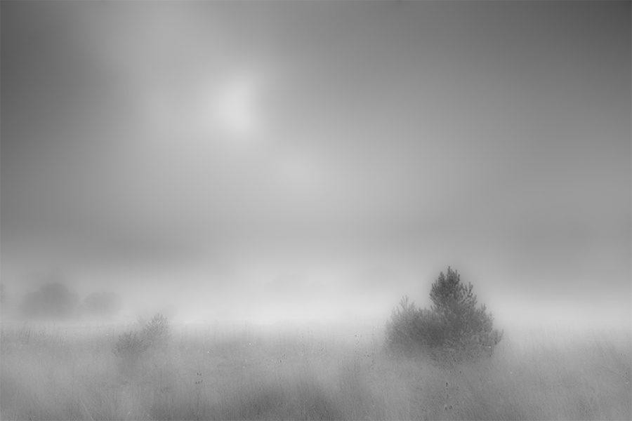 Bolu, Yeniçağa, 2015,Neutral Density Filter