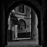 Phil Callan - Cat - Essaouira - Morocco